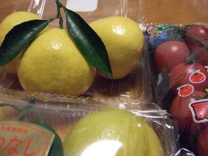 日向夏&ひがしシールのついたプチトマト