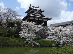 某城なんとか櫓の桜