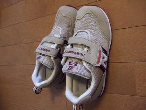 21センチの靴