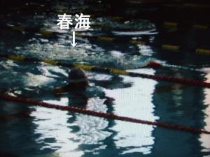 合同記録会・平泳ぎ1